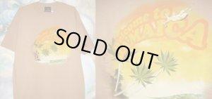 画像1: Welcome to Jamaica Tシャツ